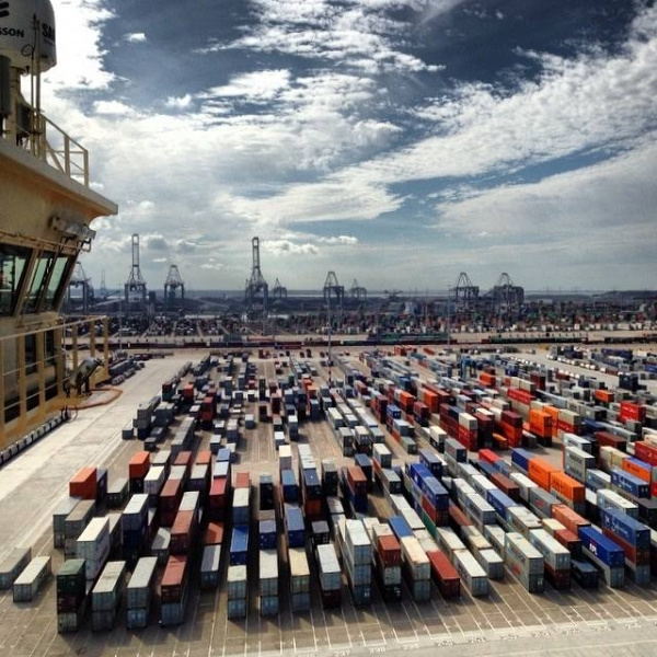 Networks and 'hidden families' in the container port industry