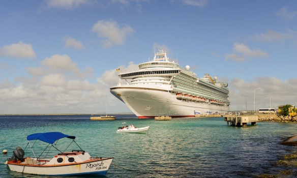 Cruise ports and sustainability: contemporary issues
