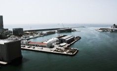 Port collaboration beyond proximity: inter–organisational relationships of port management entities