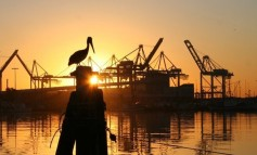 Tackling uncertainty in green pricing of port infrastructure