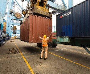 Lions or gazelles? Past, present and future of (east) African port authorities