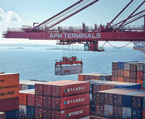 Emission control taxes in different port competition and co-operation settings