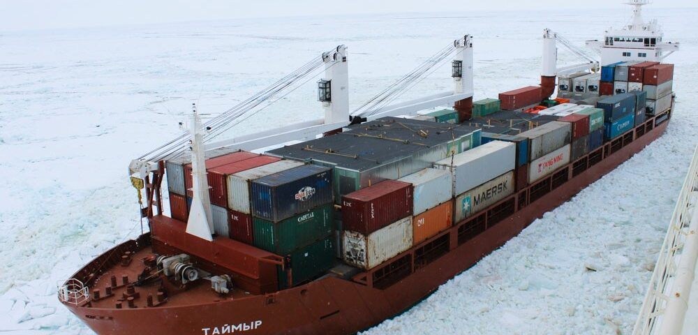 An evaluation of autonomous ship alternatives for future container shipping in the Arctic routes